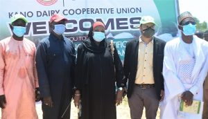 L-R: Kabiru Ali, Representative of the District Head of Dawakin Tofa LGA; Usman Abdullahi Usman, Chairman, Kano Dairy and Livestock Husbandry Cooperative Union (KADALCU); Manish Khede, Regional Manager, Outspan Nigeria Limited; and Bilkisu Mahe Wali, Branch Controller, Central Bank of Nigeria (CBN) Kano, at the flag off of the Artificial Insemination Programme for 100 Dairy Cattle by Outspan in partnership with the KADALCU in Dawakin Tofa LGA, Kano State, recently.